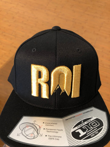 ROI Snapback with 3D Puff Embroidery