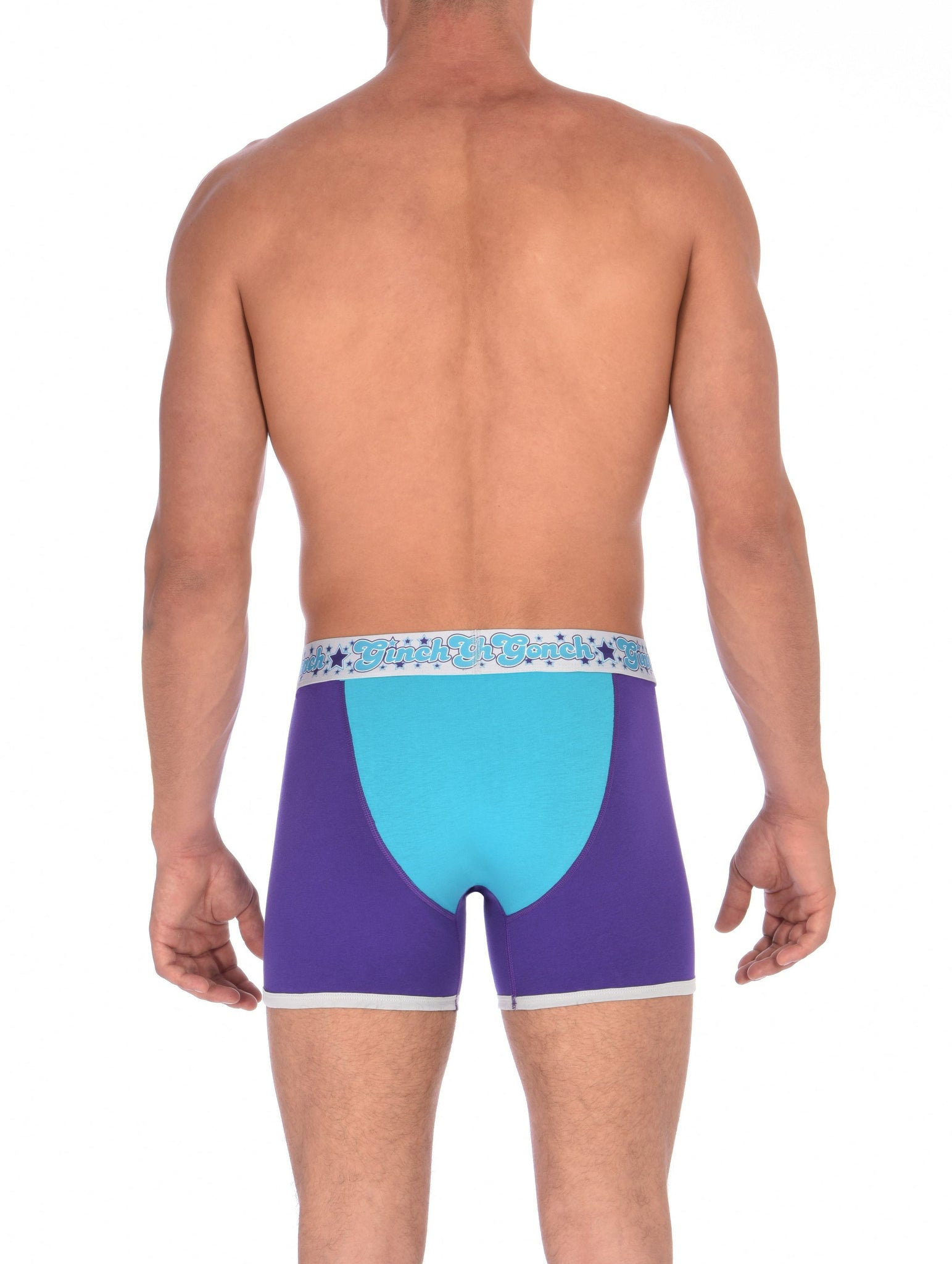 GG Ginch Gonch Purple Haze Boxer Brief y front - Men's Underwear purple and aqua panels with grey trim and silver printed waistband back