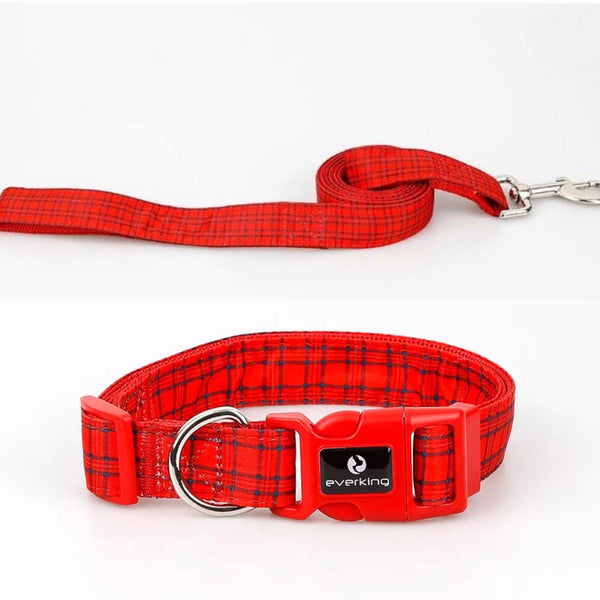 Fashion Collars (more options)