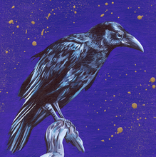 Load image into Gallery viewer, Raven/Crow