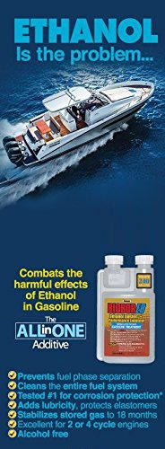 Biobor EB, Ethanol Buster and Performance Enhancer Gasoline Treatment, 1-Gallon