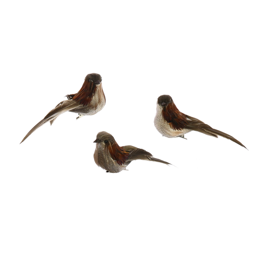 Birds on Clips, Feather - Box of 3 - Red Neck Feathers