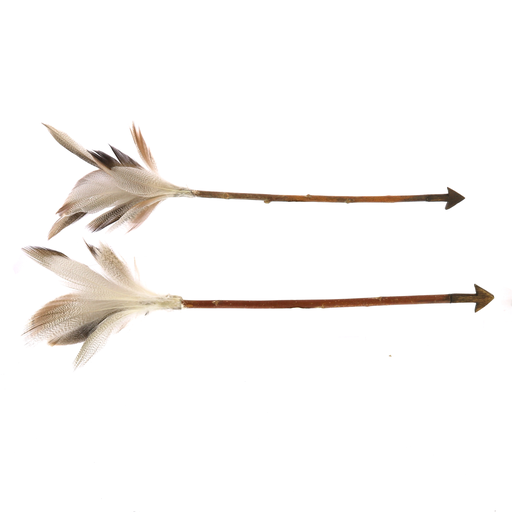 Arrows, Feather - Box of 6, Assorted
