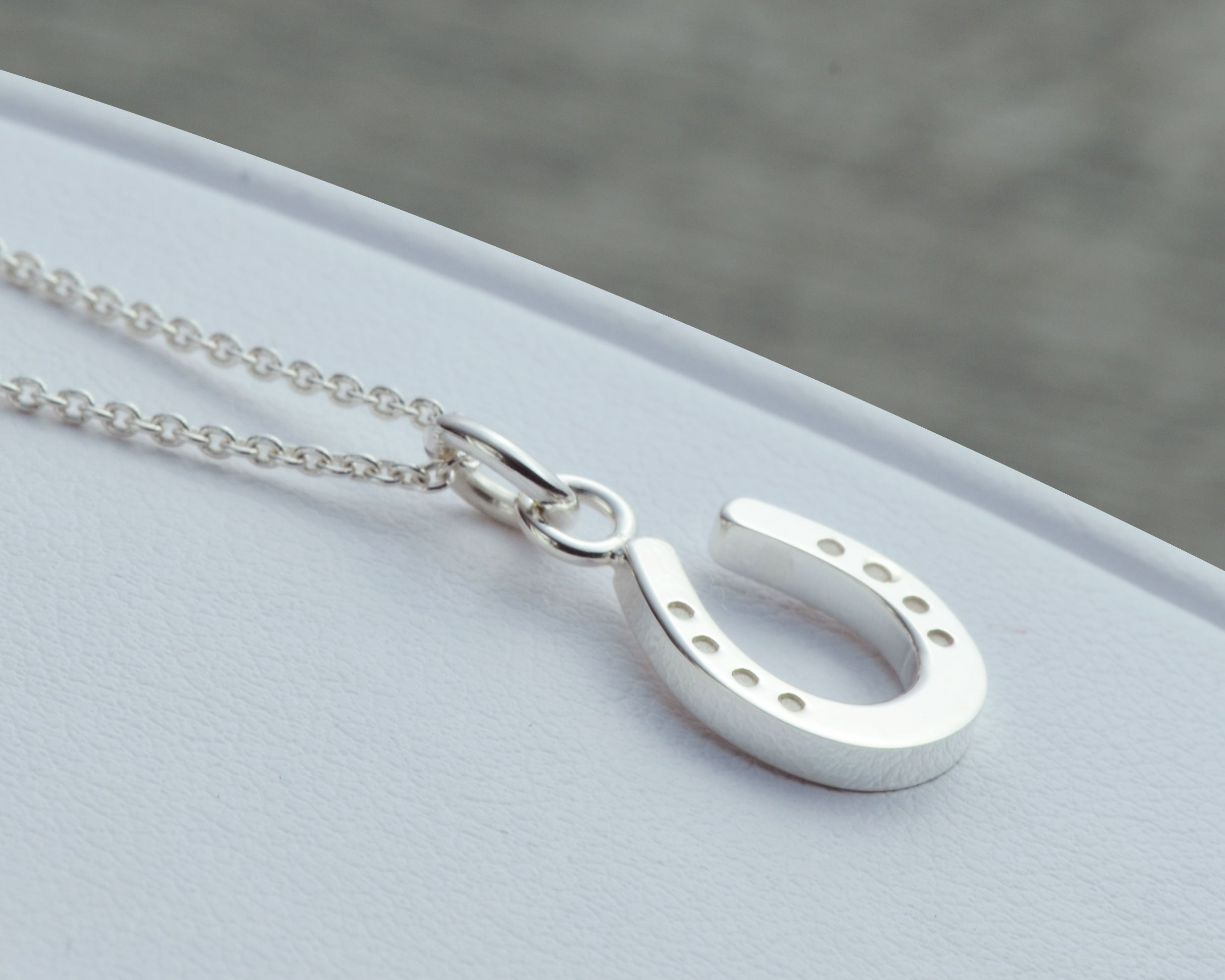 silver horseshoe necklace with chain