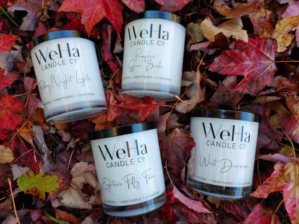 FALL Sampler  |  Set of 4 Coconut-Soy Candles