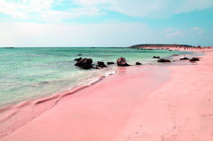 Pink Sand Type