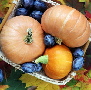 Blueberry Pumpkin