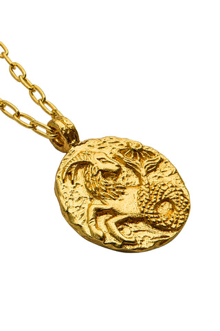 products/hazeandglory_jewelry_zodiac_starsign_necklace_Capricorn_gold_2.3.jpg