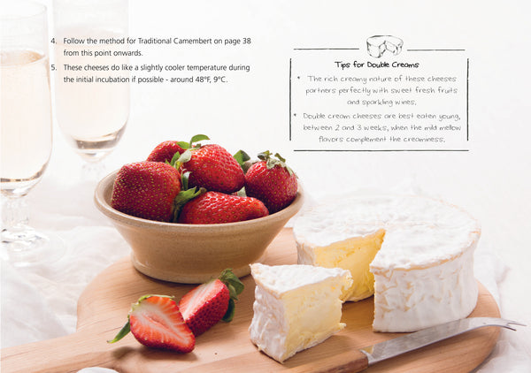 cheesemaking recipe book for brie