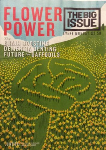 Big Issue Magazine  Flower Power How Daffodils Can Help With Dementia