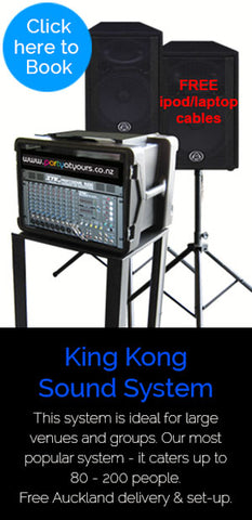 Large Sound Hire System