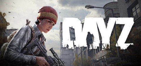 DayZ GLOBAL Worldwide Steam PC KEY - INSTANT DELIVERY 24/7 🔑🕹🎮