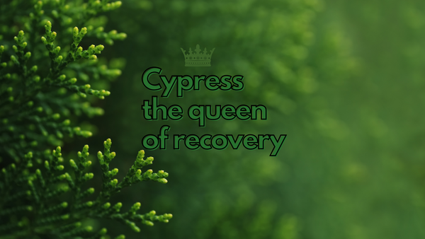 Cypress : The Queen of Recovery - Unplugged Essentials