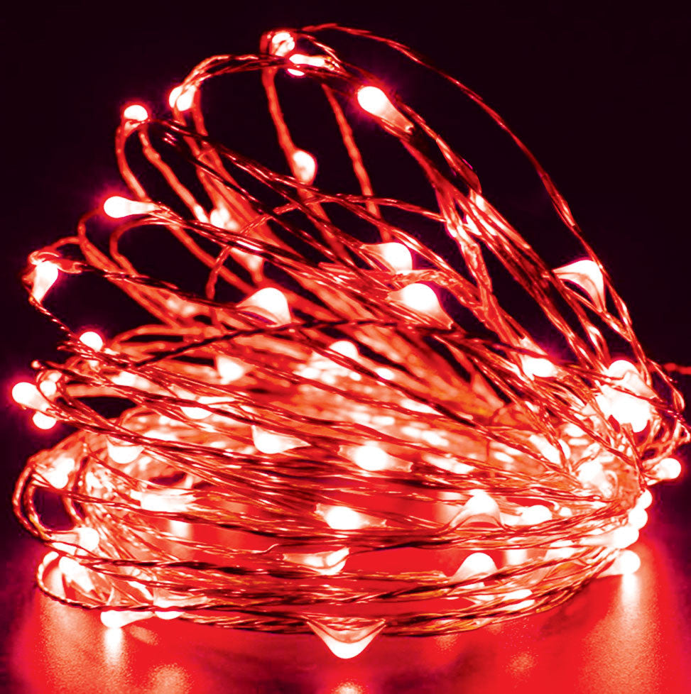 50-LED Seed Light 5m - Red