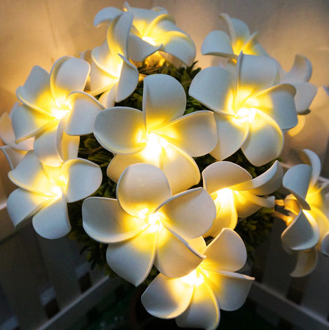 Battery Powered LED Frangipani Light String