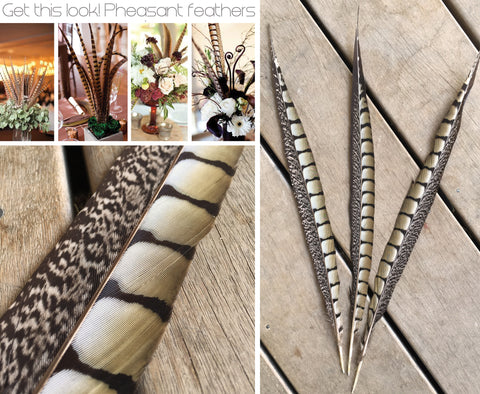 Lady Amherst Pheasant Feather 40-45cm