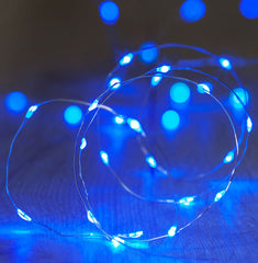 20-LED 2m Seed Light Copper String - Blue