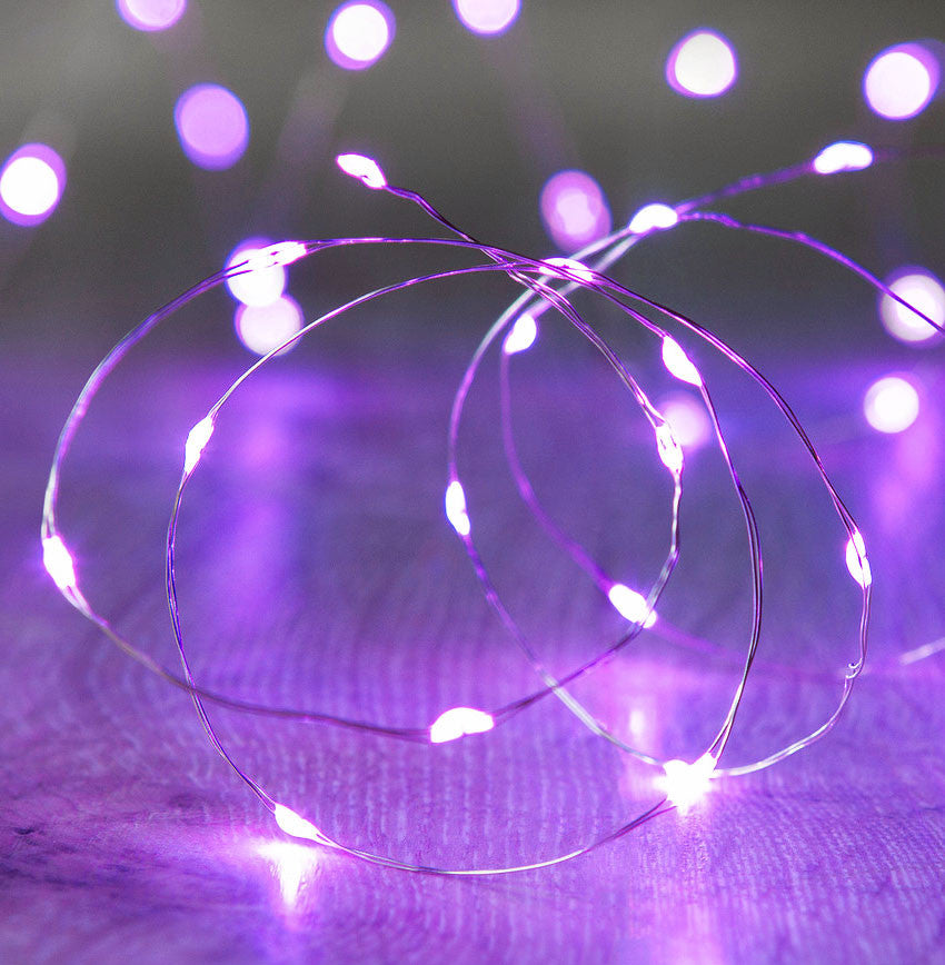 20-LED 2m Seed Light String - Purple