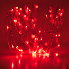 20-LED 2m Seed Light Copper String - Red