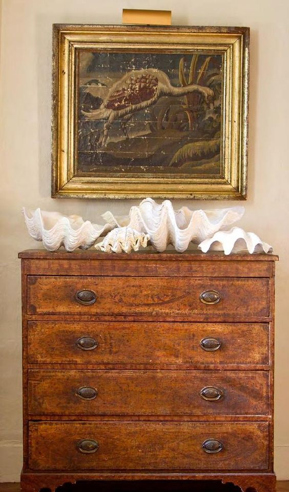 Country House Shells Decor