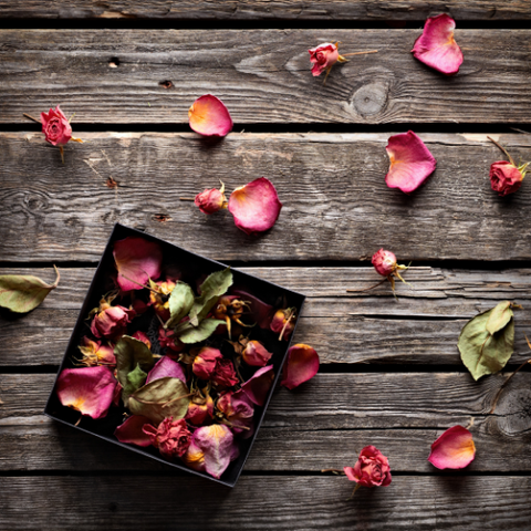 3 Ways to Use Rose Petals like a Goddess by Goddess Provisions