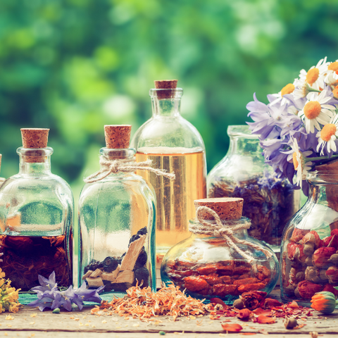 How to Bring Forest Bathing into Your Home Goddess Provisions