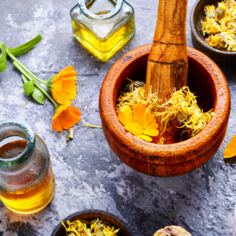 6 Herbs Known to Boost Collagen Goddess Provisions