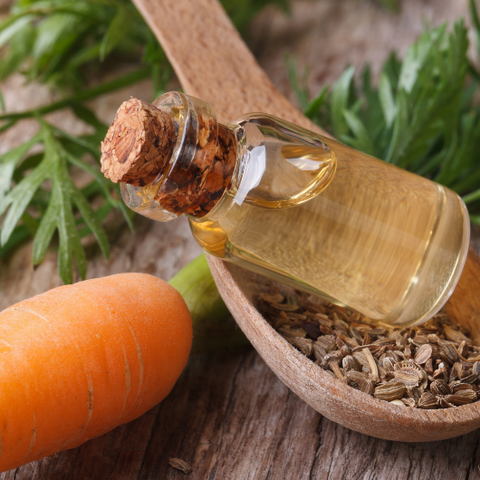 Herbal Allies for Your Skin Goddess Provisions