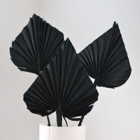 Bunch of 3 black palm spears in white vase