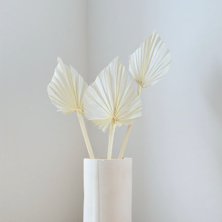 Bunch of 3 bleached palm spears in simple, white vase