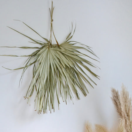 Two giant natural light moss green palms arrangement hanging from wall