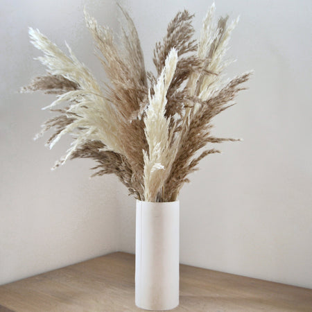 Feathery brown and white pampas cloud bunch in a simple, white vase