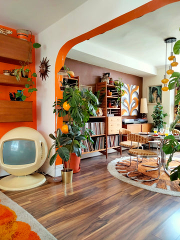 orange living room brown dining toom with ladderax vinyl collection rya rug, space age keracolor tv bidding room light