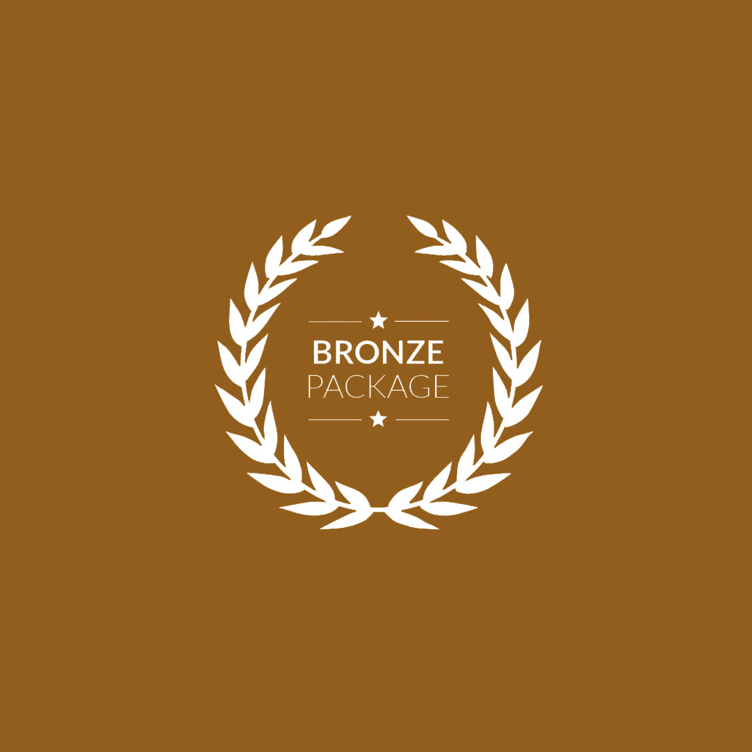 Bronze Mentorship Package