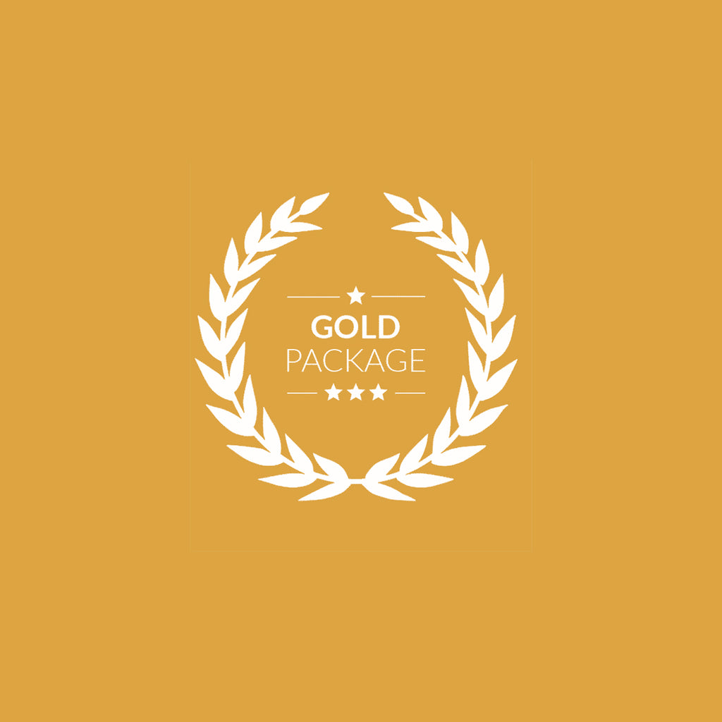 Gold Mentorship Package