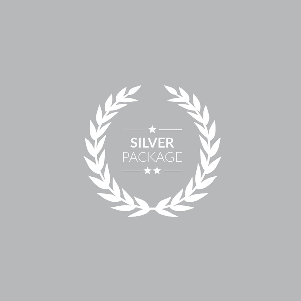Silver Mentorship Package