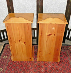 381.....A Pair Of Refinished Bedside Cabinets / Bedside Tables