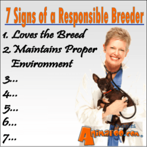 2nd sign of a responsible breeder