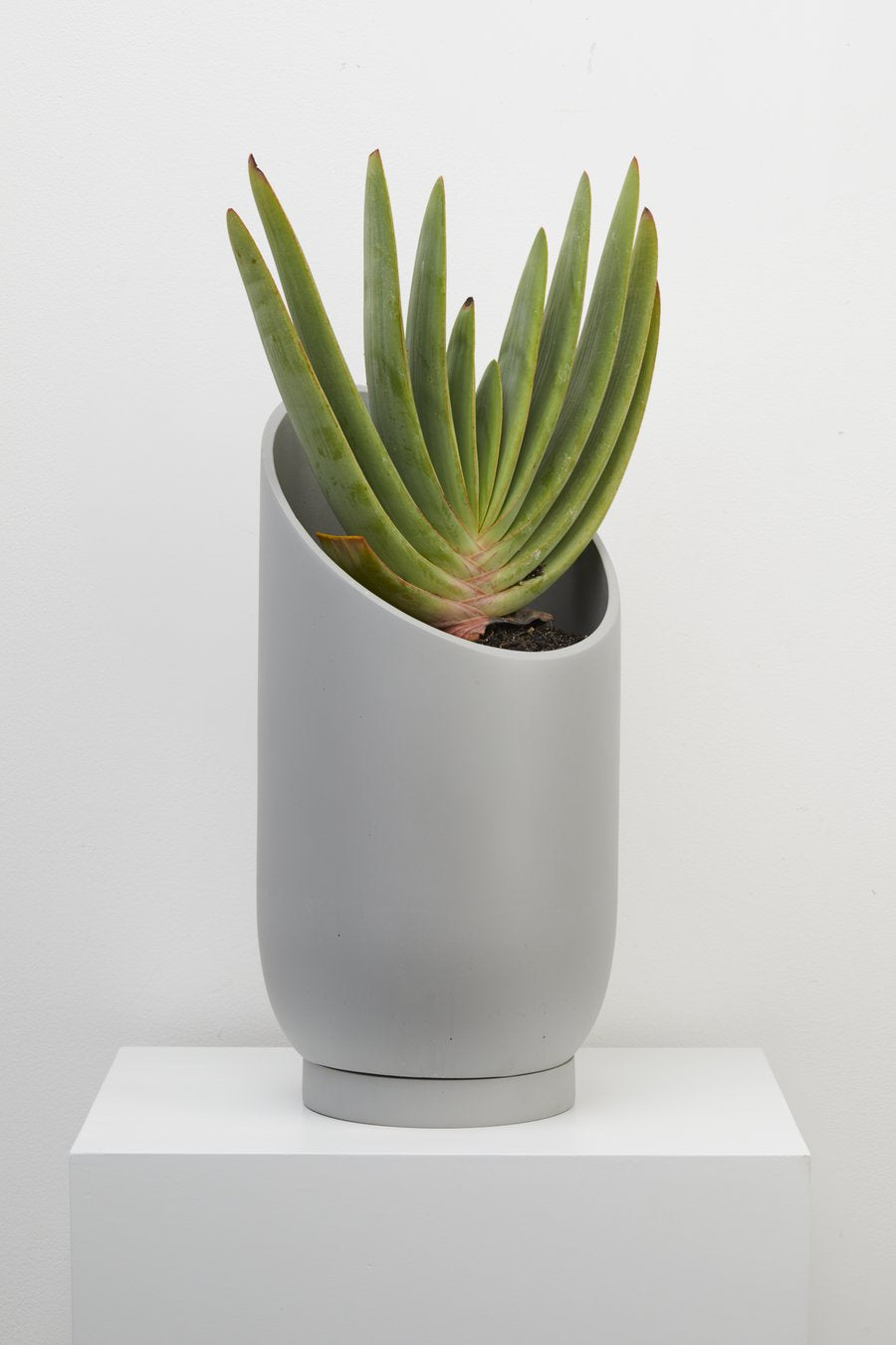 Large Summit Planter