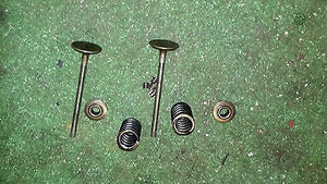Volvo Penta Aq171 A C Pair of intake Valves, springs, &  keepers laser straight