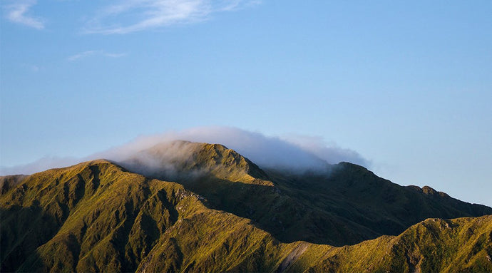 destination tararua: and the far-flung spots that we call home