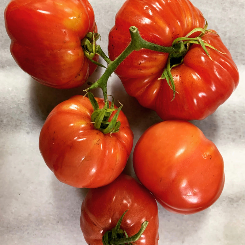 Mixed Tomatoes 500g