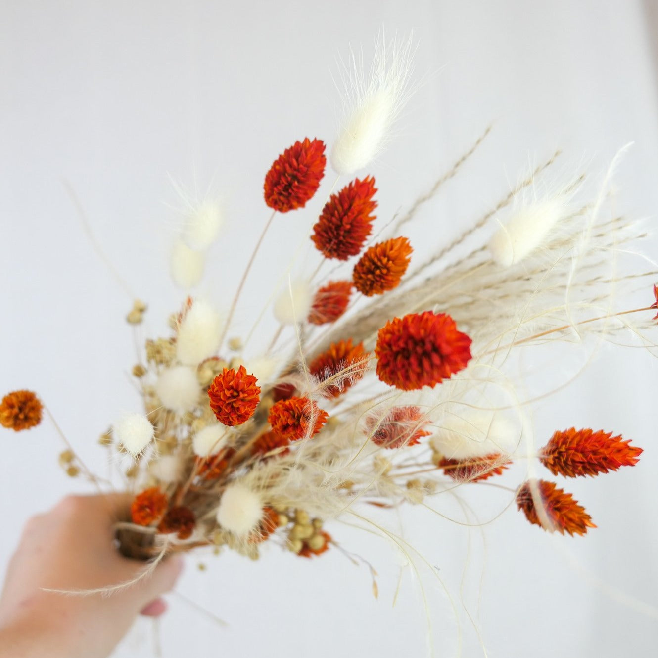 Little Orange - Flowrs.shop     boeketten, fall - gedroogde bloemen , fleurs séchees