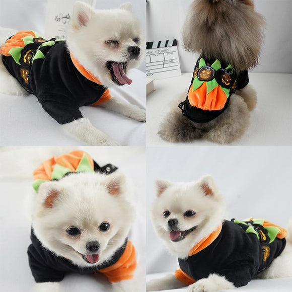 Dog Halloween Coat So Cute & Funny Devil Pumpkin Cosplay Puppy Clothes