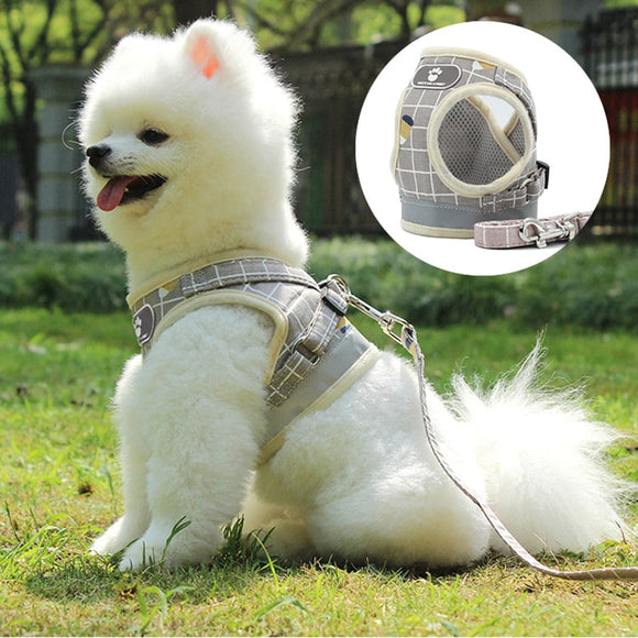Cute Dog Harness Breathable Mesh Vest and Leash Set Adjustable for Your Lovely Dogs