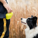 Great Silicone Dog Treat Pouch Portable Magnetic Training Treat Waist Bag Super Easy to Use & Fast