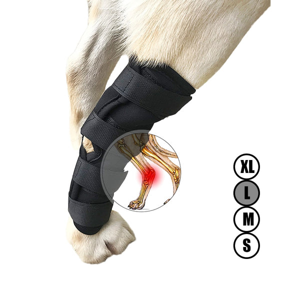 Supportive Dog Canine Rear Leg Knee Brace Hock Joint Wrap Heals and Prevents Injuries and Sprains (S-XL)