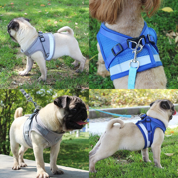 Portable Dog Harness Leash Set Dog Vest Chest Strap Reflective Night Safety for Your Lovely Dogs