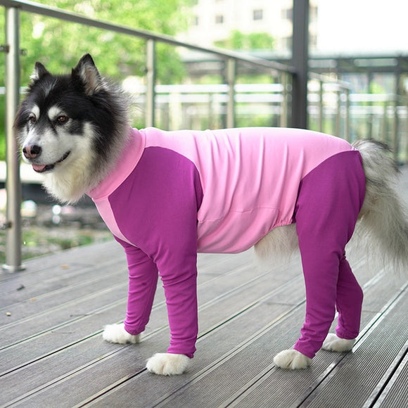 Dog Post Surgery Suit Comfortable Recovery Bodysuit Long Sleeve Surgical Protection Jumpsuit