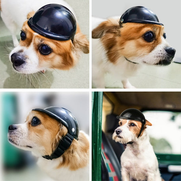 Super Cool Dog Helmet Safe Bike Helmet Riding Cap For Your Beloved Dog